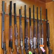 κυνηγητικά όπλα