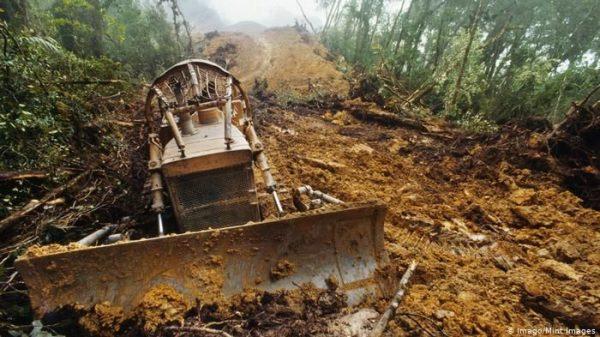 τροπικά δάση καταστρέφονται