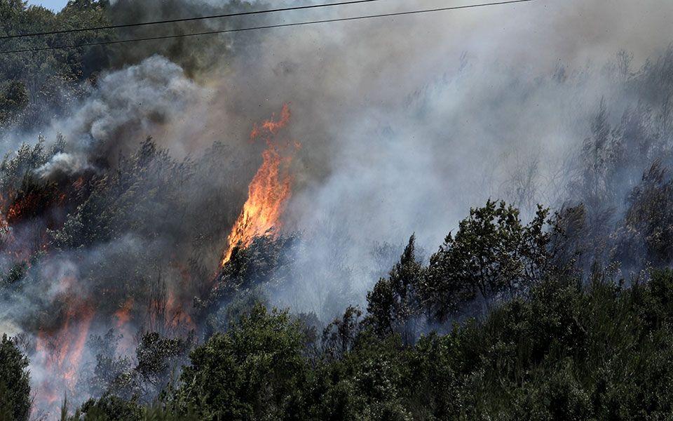 Θεσσαλονίκη - Φωτιά στο Σέιχ Σου